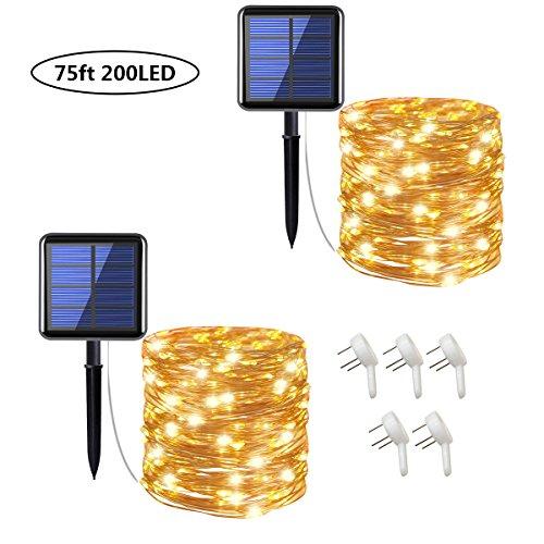 Non Solar Outdoor Lighting in Florida - 8