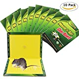 mouse glue trap (10)Mouse Trap,Mouse Glue Traps,(10Pack) Mouse Rat Glue Boards, Mouse Max Size Glue Traps Sticky Boards Mouse Catcher Mice Professional Strength Glue Insect Snake Trapper Lizard Rodent