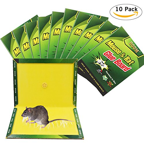 mouse glue trap (10)Mouse Trap,Mouse Glue Traps,(10Pack) Mouse Rat Glue Boards, Mouse Max Size Glue Traps Sticky Boards Mouse Catcher Mice Professional Strength Glue Insect Snake Trapper Lizard (10 Traps)