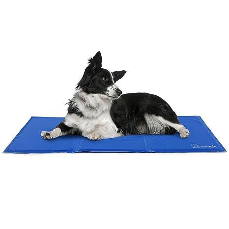 Pecute Alfombrilla de Refrigeración Animales Nevera y Manta para Perro Fresco Cojín Azul Nevera Techo Perfecta