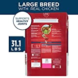 Purina ONE Natural Large Breed Adult Dry Dog