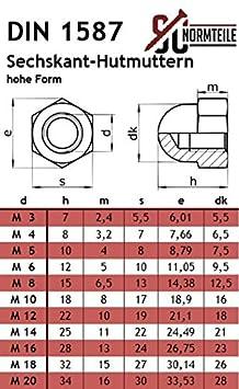 V2A 100 St/ück Edelstahl A2 - M6x30 - Flachrundschrauben // Schlossschrauben mit Hutmuttern hohe Form - Vollgewinde - SC603 // SC1587 DIN 603 // DIN 1587