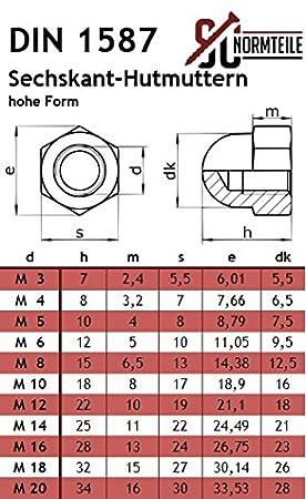 DIN 603 // DIN 1587 - Vollgewinde - SC603 // SC1587 - M6x40 - 25 St/ück Flachrundschrauben // Schlossschrauben mit Hutmuttern hohe Form Edelstahl A2 V2A