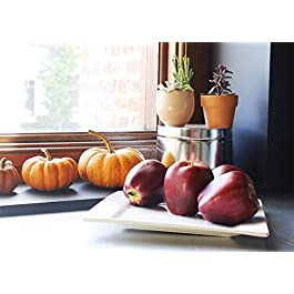 Juvale 6-Piece Fake Fruit Apples – Artificial Fruit Plastic Deep Red Apples for Still Life Paintings, Storefront Decoration, Kitchen Decor, Red – 2.7 x 3 x 2.7 Inches