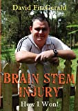 Brain Stem Injury - How I Won, David Fitzgerald, 1921919361