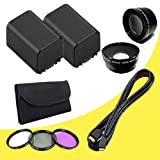 TWO BP-819 Lithium Ion Replacement Battery + 58mm 3 Piece Filter Kit + 58mm Wide Angle Lens + 58mm 2x Telephoto Lens + Mini HDMI Cable for Canon Vixia HFG10 XA10 HFS10 HFS20 HFS21 HFS30 HFS100 HFS200 Digital Camcorder DavisMAX BP819 Accessory Bundle