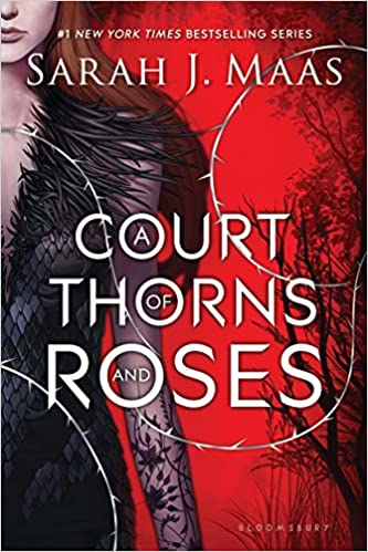 Image result for a court of thorns and roses by sjm