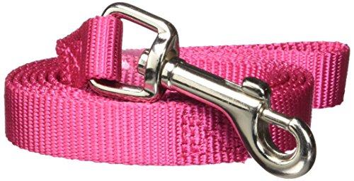 Zack & Zoey Basic Nylon Dog Leash, 4-Feet x 5/8-Inch Lead, Raspberry Sorbet