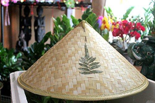 VietnameseArtwork.com Vietnamese Traditional Hat - Conical Hat (Non La) with Ferns ()