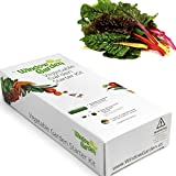 Garden Starter Kit (Swiss Chard) Grow a Garden by Seed. Germinate Seeds on Your Windowsill Then Move to a Patio Planter or Vegetable Patch. Mini Greenhouse System Makes it Foolproof, Easy and Fun.