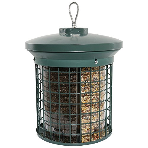Sunnydaze 11 Inch Squirrel Proof Green Triple Tube Wild Bird Feeder (Tube Feeder Wild Bird)