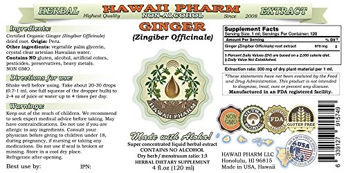 Ginger Alcohol-FREE Liquid Extract, Organic Ginger (Zingiber officinale) Dried Root Glycerite 2x4 oz by HawaiiPharm (Image #1)