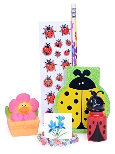 Giftarrangements.net 12 Pre-filled Ladybug FUN Party Goodie Bags