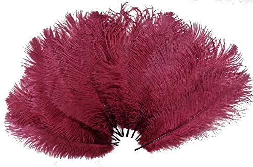 - Kolight50pcs 8''~10''(20cm~25cm) Natural Ostrich Feathers for DIY Wedding, Party,Home,Hairs Decoration (Burgundy)