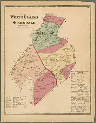 Historic 1868 Map | Plate 39: Towns of White Plains and Scarsdale, Westchester, N.Y. | Antique Vintage Map - Westchester The Plains White