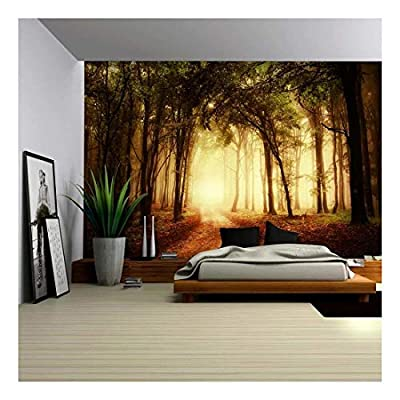 Pathway in a Forest with an Orange Glow - Wall Mural, Removable Sticker, Home Decor - 66x96 inches