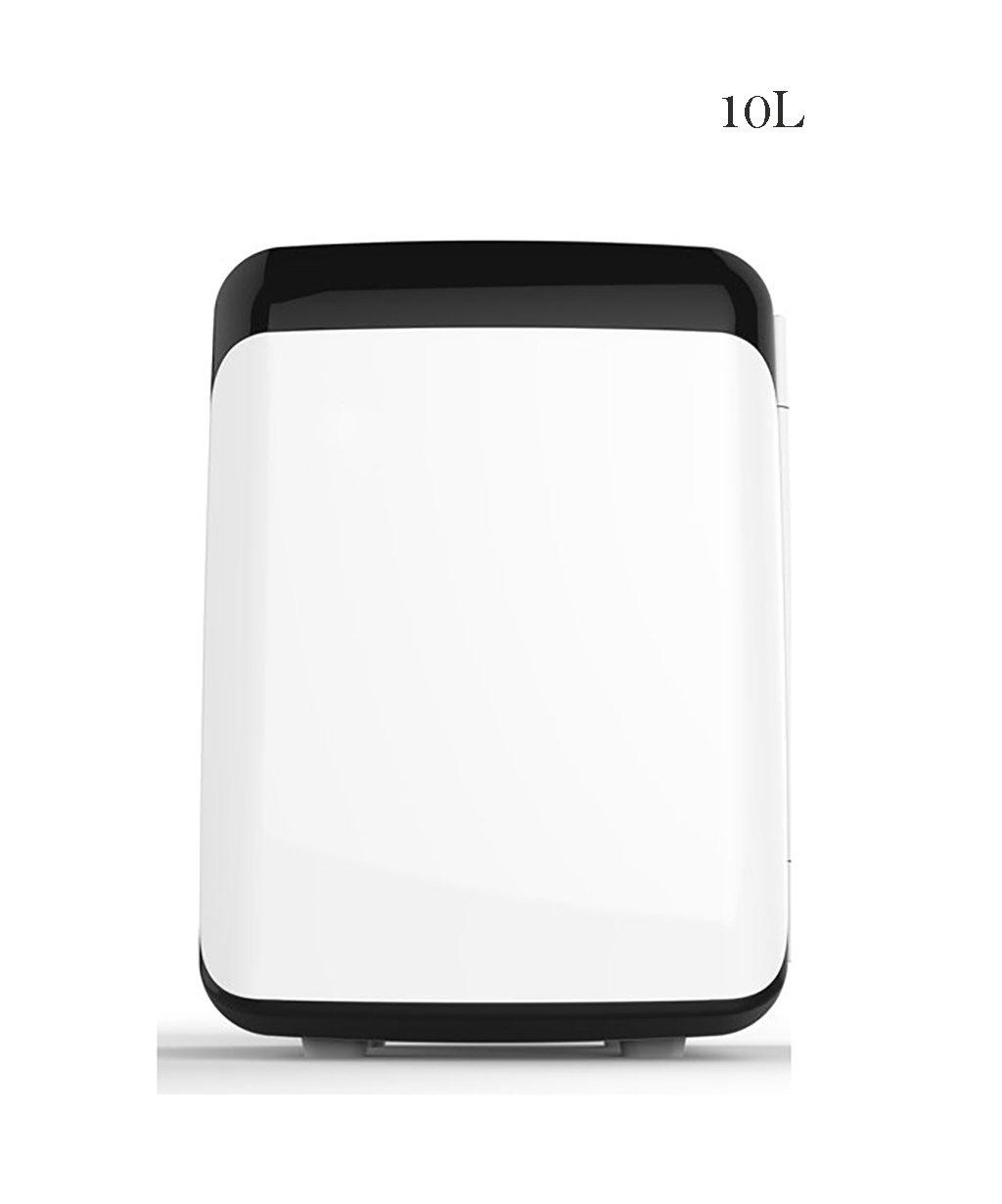 LIQICAI Elektrische Coolbox Kühlbox Kühlung Auto Mini Kühlschrank Kühler Warm/Cool für Home Auto Student Dormitory -12V DC 220V AC (Farbe : A)