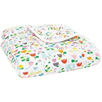 aden + anais Zutano Dream Blanket, Fairground, 1 Pack