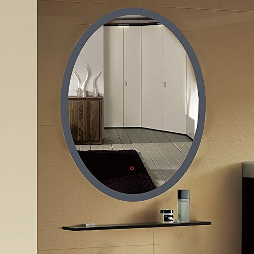 24 x 32 In Vertical Oval LED Bathroom Silvered Mirror with Touch Button (C-CL054)