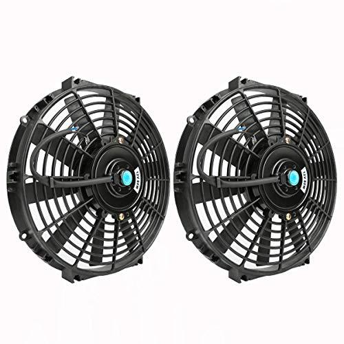 Best Fan Fans