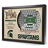 NCAA Michigan State Spartans - Spartan Stadium Stadiumview Wall Art, One Size, Birch Wood