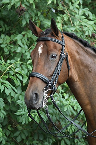 Bridle Silver Weymouth Horka Bridle Black Black Horka Weymouth Silver Horka q041w