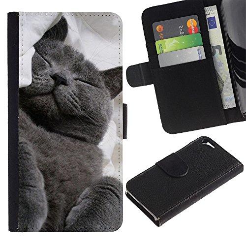 EuroCase - Apple Iphone 5 / 5S - Russian blue korat cat black feline - Cuir PU Coverture Shell Armure Coque Coq Cas Etui Housse Case Cover