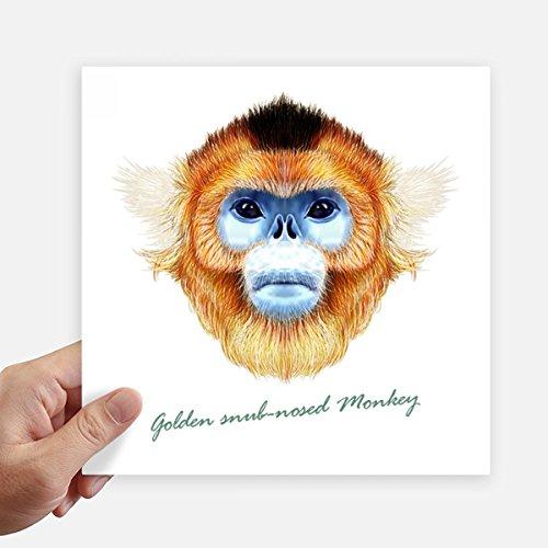 DIYthinker Golden Snub-nosed Monkey Animal Square Stickers 20cm Wall Suitcase Laptop Motobike Decal 4pcs
