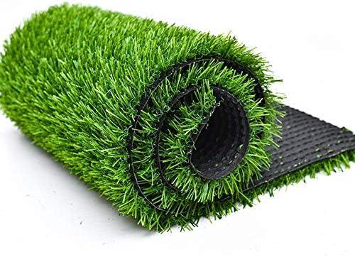 太いグリッドスーパー高密度ターフサッカー場デコレーショングラスグリーングラスの200x50cm、環境保護シミュレーション芝生、購入A数メートルに数メートルが必要 (Color : Encrypted, Size : 1cm)