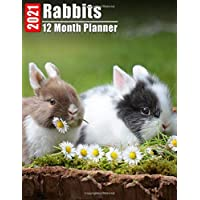 Image for 2021 Planner 12 Months Rabbits: 2021 Academic Monthly Calendar, Daily Schedule, Important Times, Habit & Health Tracker and Top Goals all in One! With ... Images and Inspirational Quote each Month