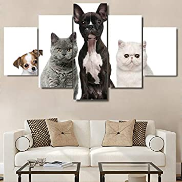 QFQH Farmework Lienzos Salón de Arte de pared impresiones HD 5 Piezas adorable cachorro perros y gatos Poster Decoracion Animales Imágenes,pequeños: ...
