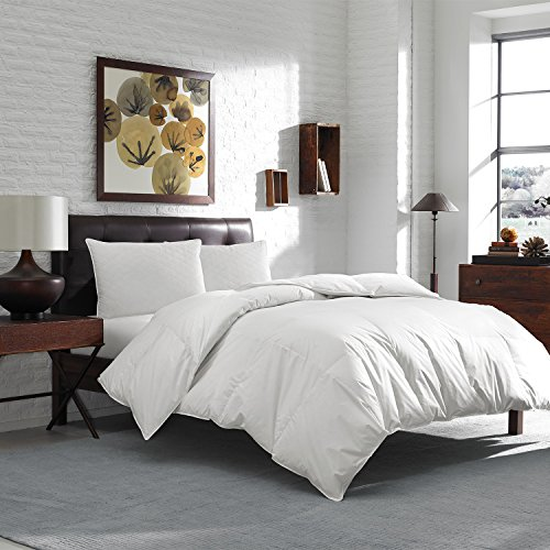 Eddie Bauer 600 Fill Power WGD Comforter Comforter Size: Oversized Queen