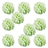 grape decorations set - WYZworks Set of 10 - GRAPE GREEN 8