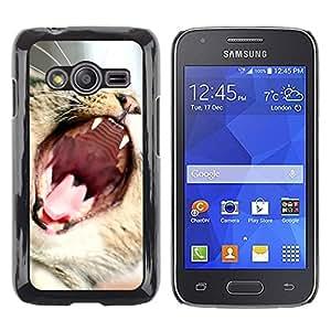Be Good Phone Accessory // Dura Cáscara cubierta Protectora Caso Carcasa Funda de Protección para Samsung Galaxy Ace 4 G313 SM-G313F // Cat Roar Yawn Funny Cute Teeth Mouth Whiskers
