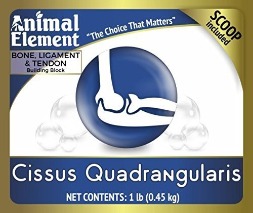 Animal Element Cissus Quadralangularis 2.5% Ketosterone Extract - 1 Lb. Supports Healthy Joints and Bones, All Natural, GMO Free by Animal Element (Image #3)