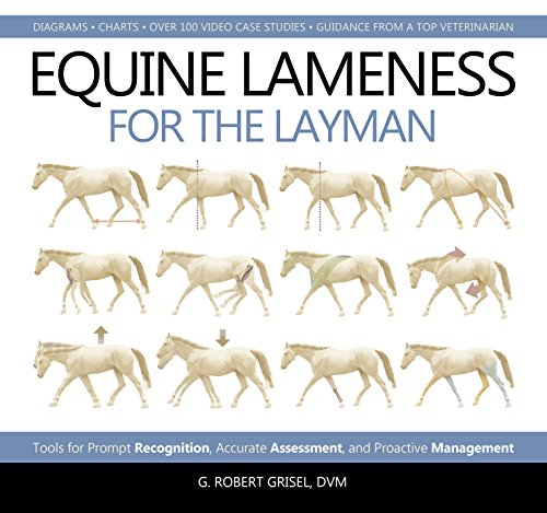 Pdf Outdoors Equine Lameness for the Layman: Tools for Prompt Recognition, Accurate Assessment, and Proactive Management