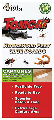 Tomcat Household Pest Glue Boards, 4-Pack (For Roaches, Insects, Scorpions, and Spiders) (Glue Traps Spiders)