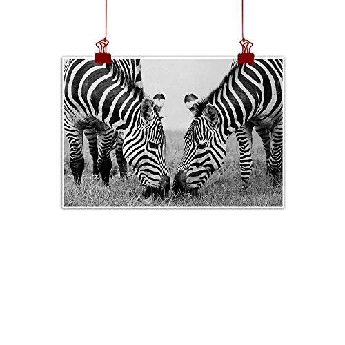 Sunset glow Wall Art Print Home Decor Animal,Zebras African Wildlife Burchell Safari Theme National Park Monochrome Picture,Black White 48