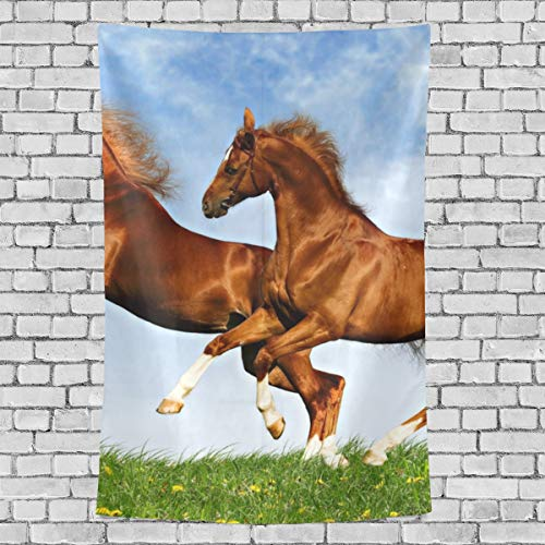 LORVIES Two Horses Frolic On The Plain Tapestry Wall Hanging for Home Wall Decorative for Living Room Bedroom Dorm Decoration, ()