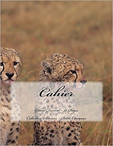 En ligne téléchargement gratuit Cahier - Grand Format - 48 pages - Collection Sciences: Petits Carreaux - Design Original 9 pdf, epub