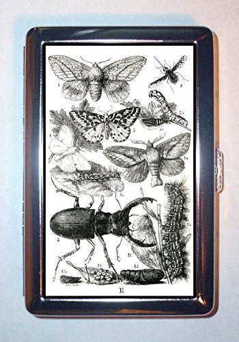 c1860 Victorian Bug Insect Butterfly, Beetle, ID Wallet or Cigarette Case USA Made