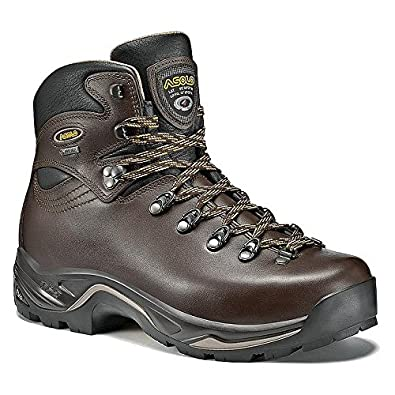 02c9a43ba19 Asolo TPS 520 GV Boot - Men s Chestnut 7