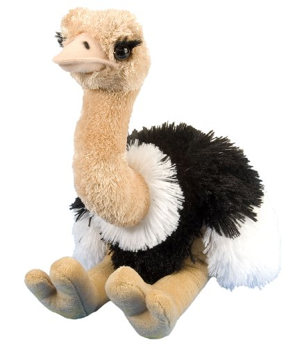 Wild Republic Ostrich Plush, Stuffed Animal, Plush Toy, Gifts for Kids, Cuddlekins 12 Inches ()