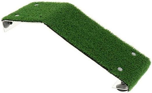 Sansund Tortuga Plataforma de Tortuga Rampa para Reptiles, Escalera de Reposo para terraza, simulación de césped: Amazon.es: Productos para mascotas