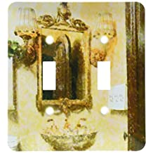 3dRose LLC lsp_41573_2 Victorian Peach and Brown Bathroom, Double Toggle Switch