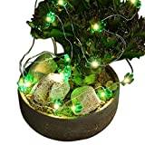 Gzero Copper Cactus String Lights, 10ft 30 LEDs Decorative Lights Battery Powered with Remote for Indoor Outdoor Gardens Bedroom Wedding School Home Party Decor