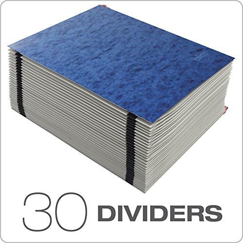 Pendaflex Expanding Desk File, Daily (1–31), Letter Size, Blue, Each (11013) by Pendaflex (Image #2)