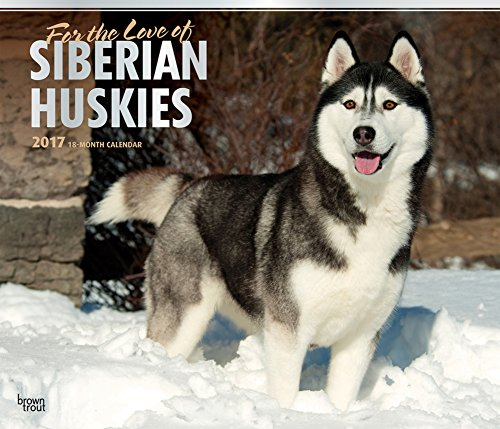For the Love of Siberian Huskies Deluxe - 2017 Calendar 14 x 12in