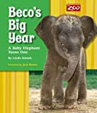 Beco's Big Year, Linda Stanek, 0984155422