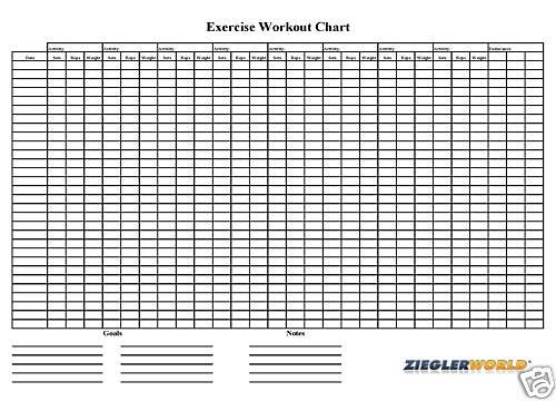 Amazon.Com : Huge 22 X 34 Laminated Reusable Exercise Workout Wall